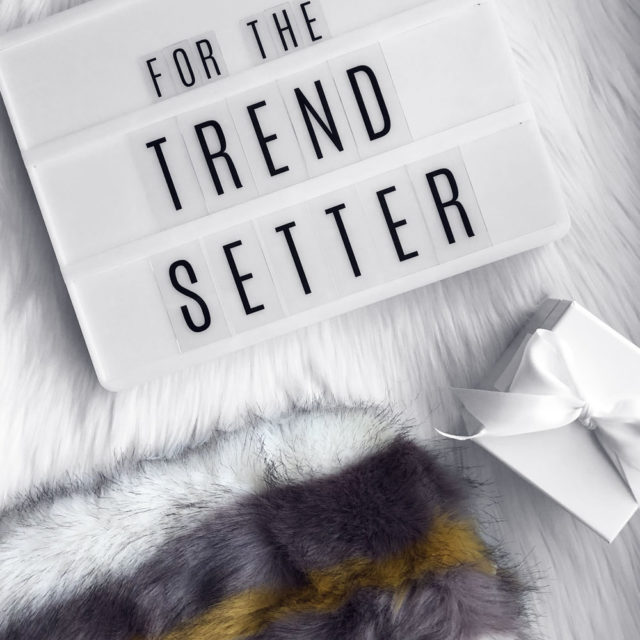 for the Trendsetter  |  2017 Holiday Gift Guide